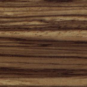 MELISSA-ZEBRANO-392×291